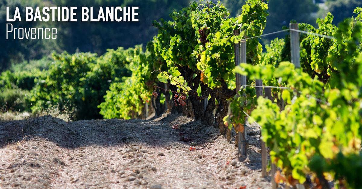 Bastide Blanche