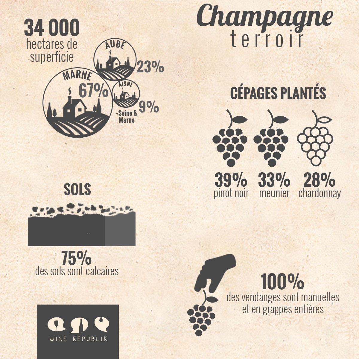 Le Terroir de la Champagne