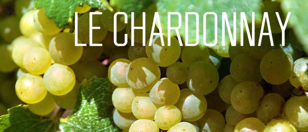 21 01 06 Chardonnay